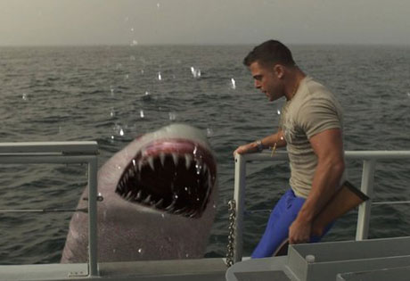 Jersey-Shore-Shark-Attack-