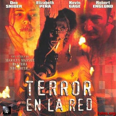 Terror-En-La-Red-Delantera-Vcd